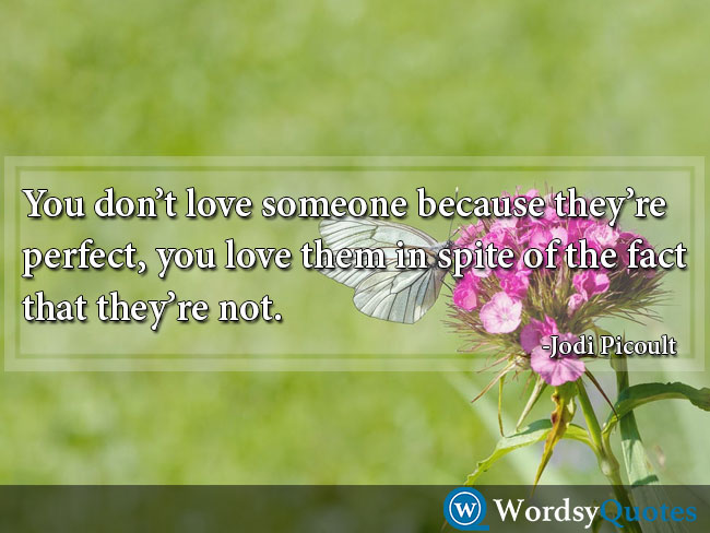 Jodi Picoult love quotes